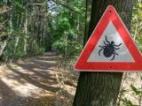 Un hôpital des Hautes-Pyrénées centre de compétences pour la maladie de Lyme