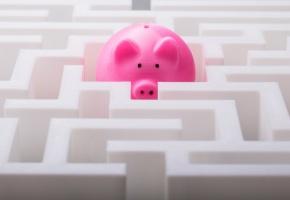 Tirelire cochon dans un labyrinthe